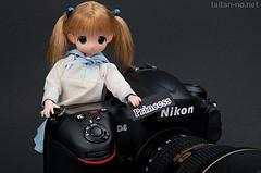 Nikon D4 レビュー